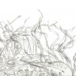 DrouetSculptures_BBBB8682